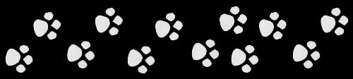 pawprints decal